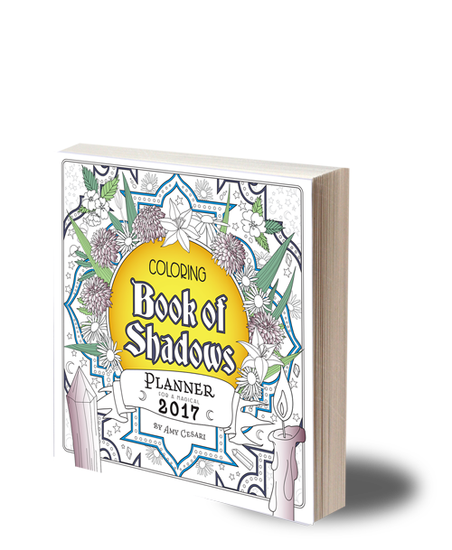 coloring book planner planner for a magical 2017 coloring book of shadows