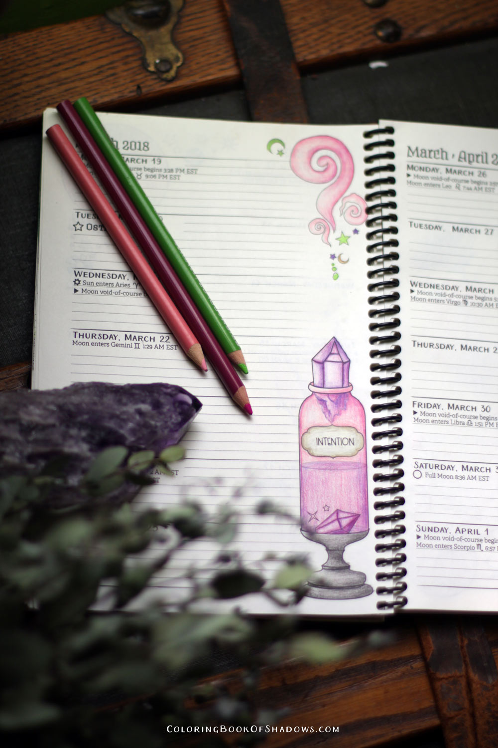 Witchy potion bottles and more magical coloring inspiration