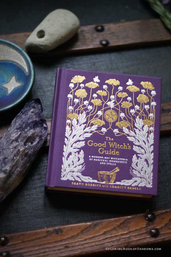 A really fun witchcraft book! The Good Witch's Guide by Shawn Robbins and Charity Bedell. Check out this list of more favorite books, spell books, and other witchy things to read.