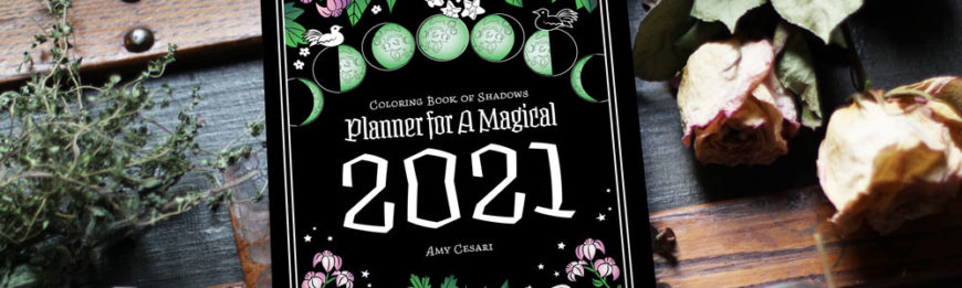 Coloring Book of Shadows Planner for a Magical 2021
